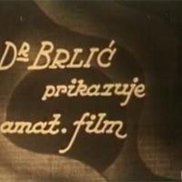 Sličice iz obiteljskog života (Dr. Ivan Brlić)